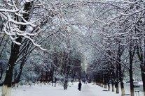Коли знову піде сніг і будуть морози: синоптик назвав дати