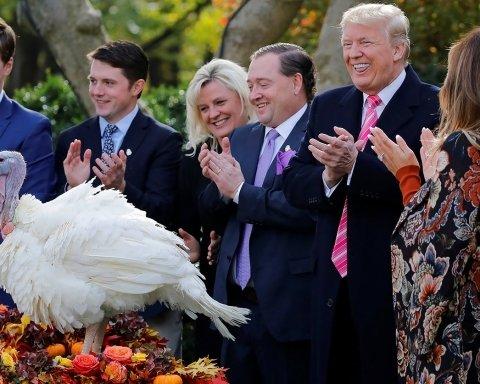 Морковка или Горошина: кого на день благодарения помилует Трамп