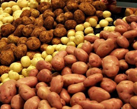 Онкологи попередили про смертельну небезпеку простої картоплі