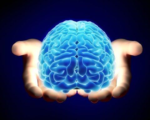 Врачи рассказали, каким образом можно стимулировать работу мозга