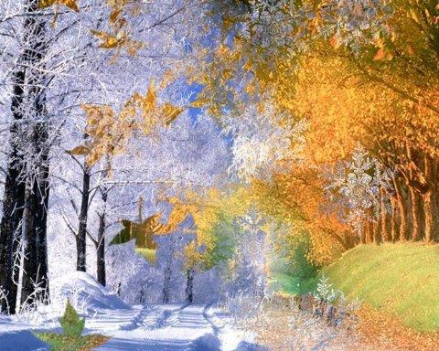 Погода в Украине: синоптик рассказала, когда придут дожди и холод