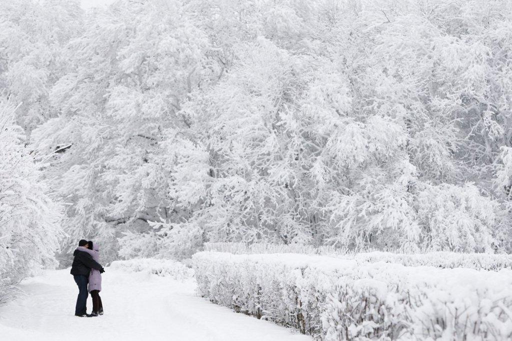 Украинцев ждет ужасная погода: кого засыпет снегом