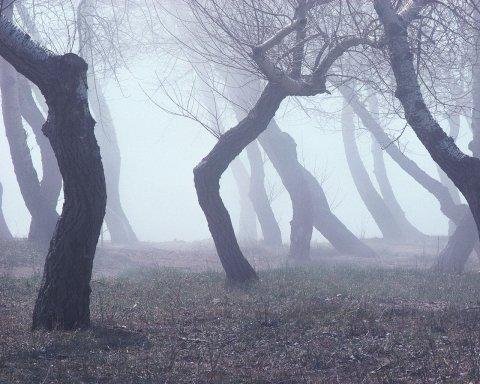 Туман, вітер і холод: яким областям не пощастить з погодою