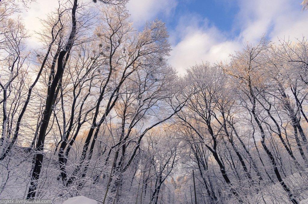 Новий день, нова погода: синоптик розповіла, до чого готуватись українцям