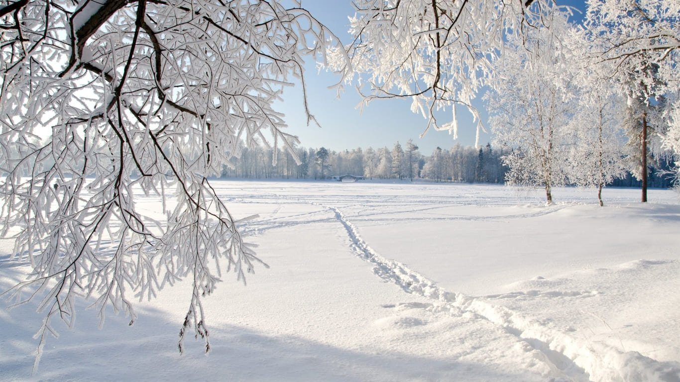 Когда в Украине снова похолодает: синоптики поделились свежим прогнозом погоды