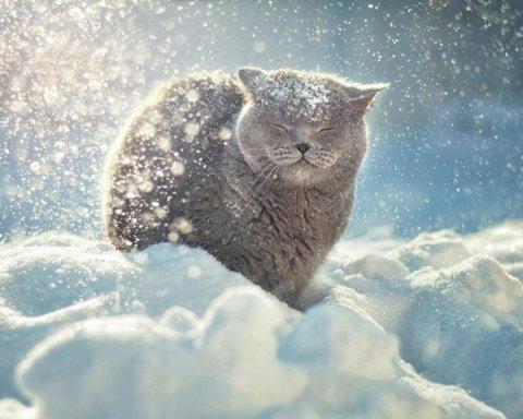 Серьезные морозы: синоптик дал прогноз погоды для Украины
