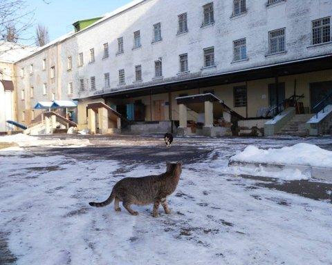 У Києві урочисто відкрили в'язницю: фото насмішило мережу
