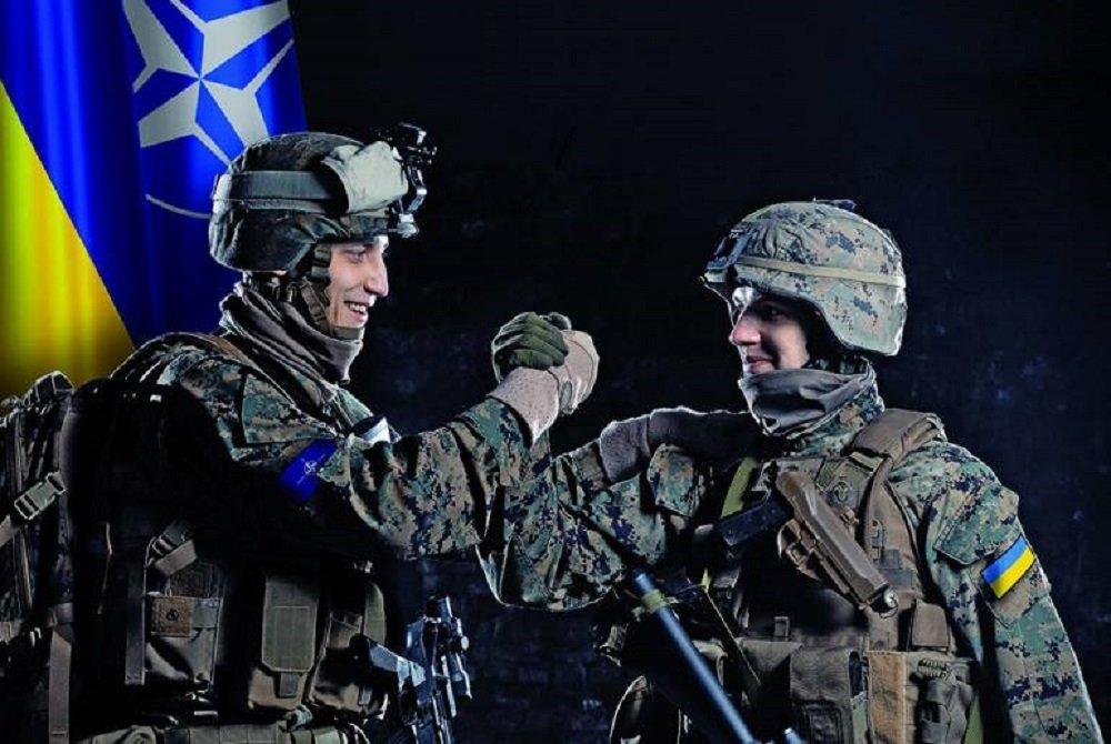 """Результат пошуку зображень за запитом """"Украинские ЗСУ и НАТО"""""""