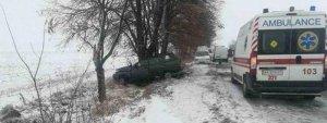 Под Киевом произошло смертельное ДТП: опубликовано фото