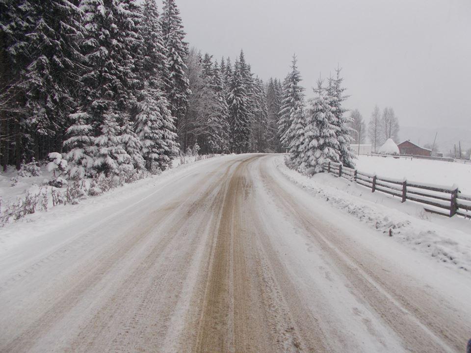 Карпаты засыпало рекордным количеством снега, появилась угроза схода лавин