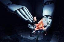 Фантастична технологія: кімнатним рослинам більше не потрібні люди, створено спеціального робота
