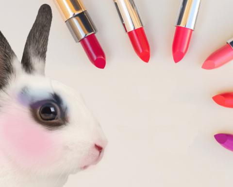 Продукт не тестировался на животных: украинский косметический рынок ждет «переворот»
