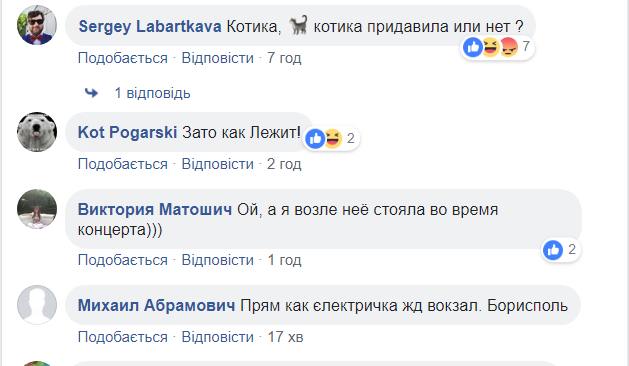 В аэропорту Борисполь произошло смешное ЧП: появились кадры с места события