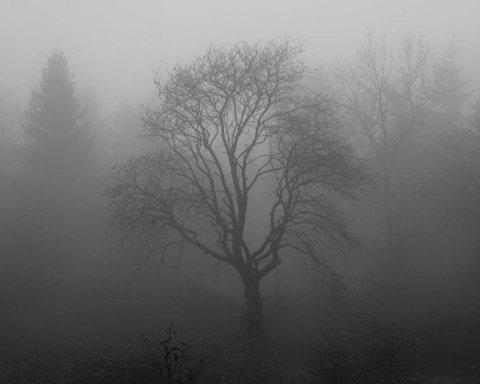 Депрессивная погода: туман и дождь со снегом, какие области зальет