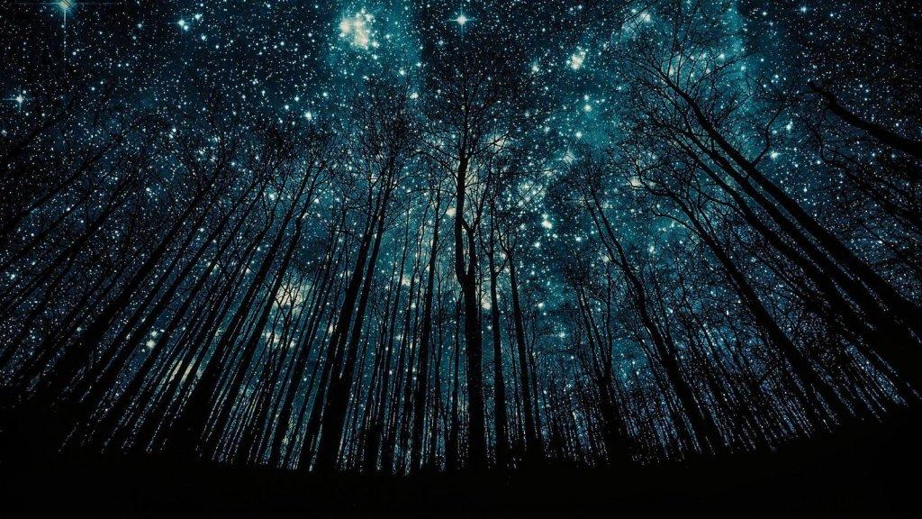 Звездопад в мае: где и когда смотреть красочный метеорный поток Эта-Аквариды
