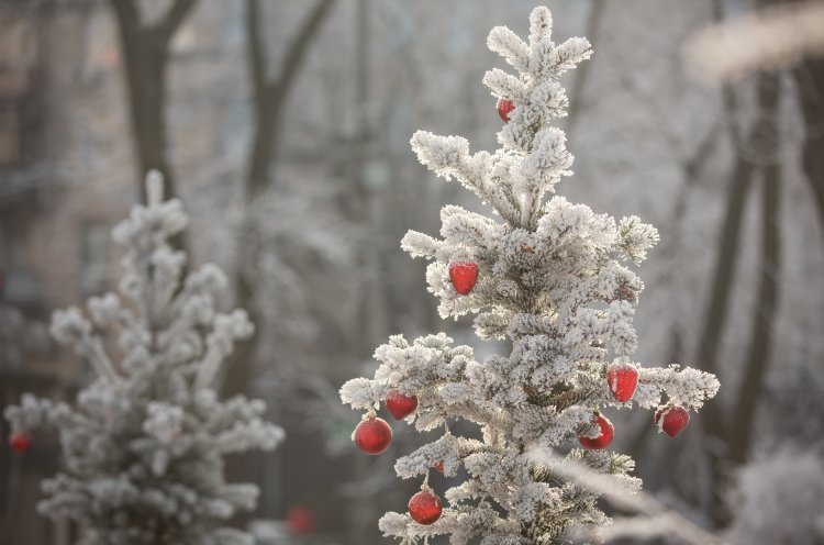 Погода в Україні на святого Миколая: синоптики розповіли, де вдарять морози