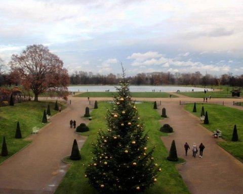 Різдво Вільяма, Гаррі, Кейт і Меган: Кенсінгтонський палац показав, як прикрашали ялинку
