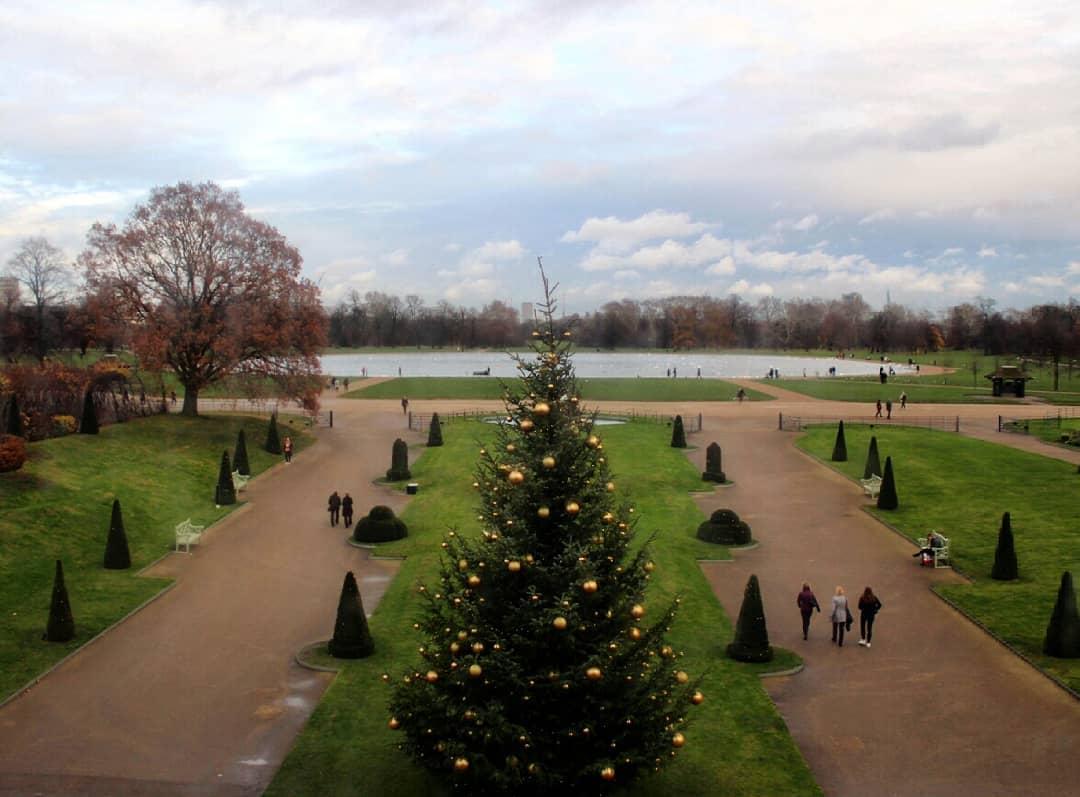 Рождество Уильяма, Гарри, Кейт и Меган: Кенсингтонский дворец показал, как наряжали елку