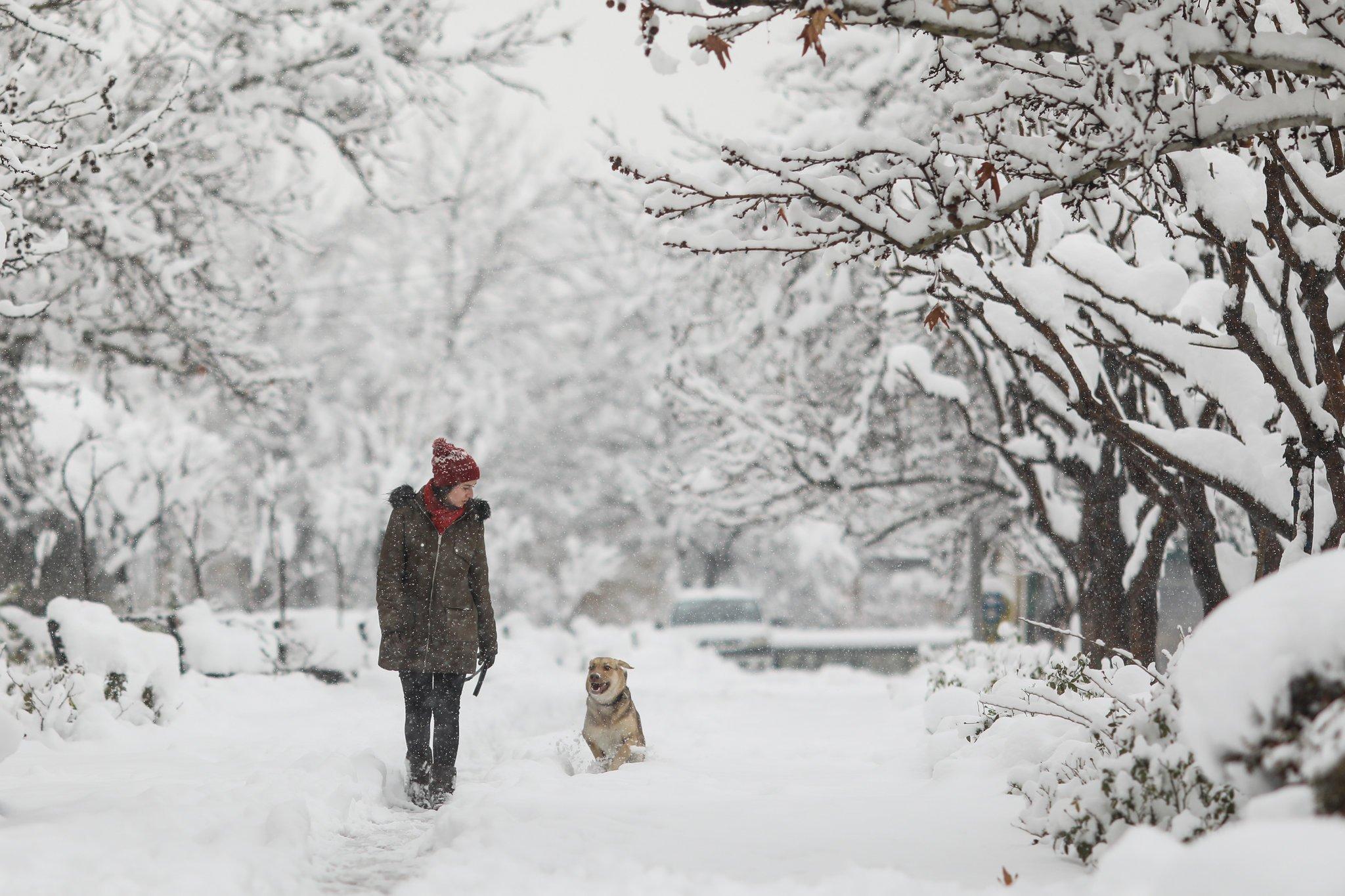 В Україні будуть 30-градусні морози: синоптики назвали дати