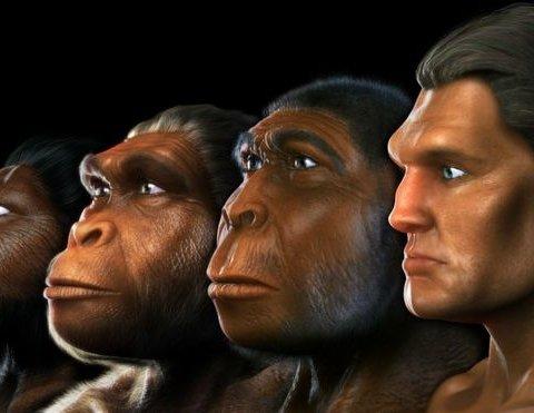 Вчені зробили неймовірне відкриття: виявлено раніше невідомого предка людини