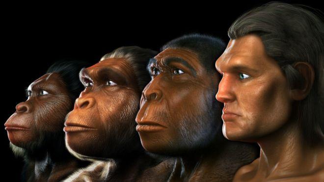 Ученые сделали невероятное открытие: обнаружен ранее неизвестный предок человека