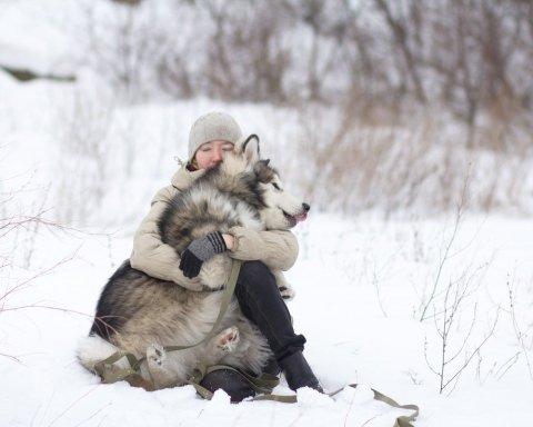 Морозы 30 градусов: синоптик рассказал, когда придет настоящая зима