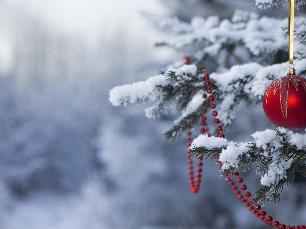 Вріжуть сильні морози: синоптик дала прогноз погоди на Різдво