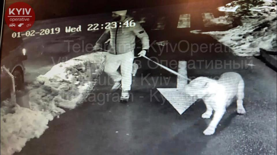 Появилось фото подозреваемого в ужасном убийстве в центре Киева