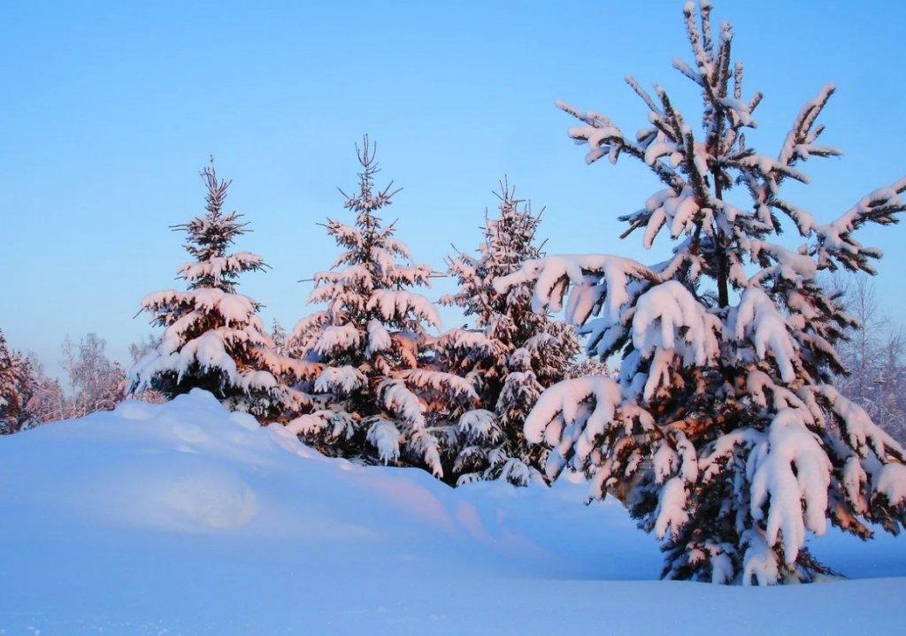 Сильні морози і снігопади: синоптики розповіли, яким буде лютий Україні