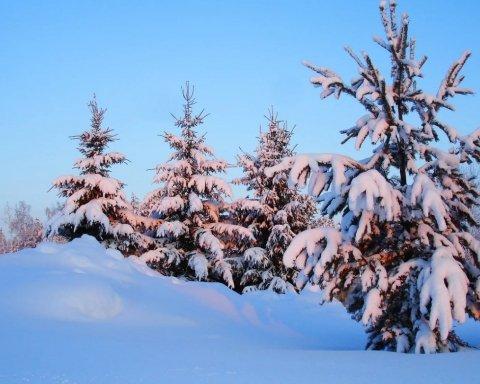 Сильные морозы и снегопады: синоптики рассказали, каким будет февраль в Украине