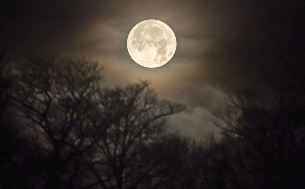 Когда первая женщина полетит на Луну: в NASA назвали дату