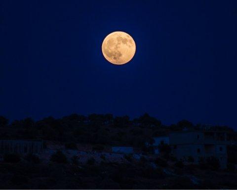 На темному боці Місяця почали вирощувати земні рослини: деталі дивовижного експерименту