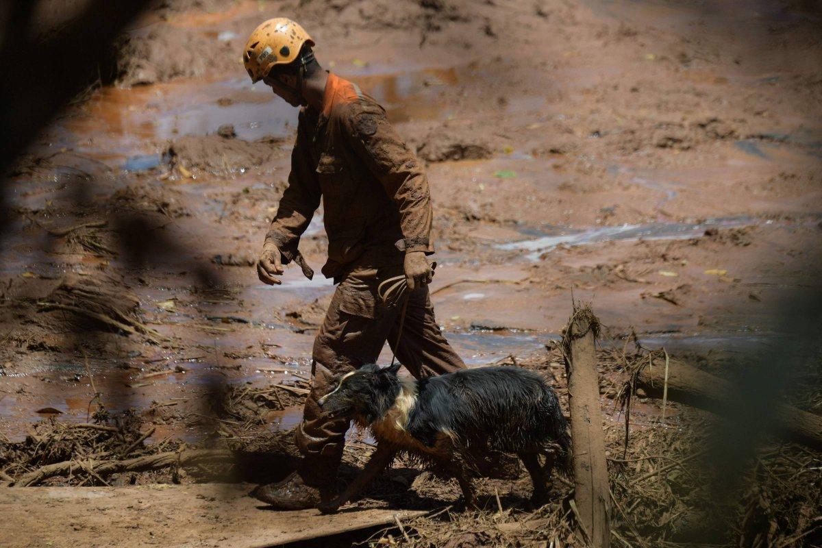 Прорыв дамбы в Бразилии: число жертв продолжает расти, живых перестали находить