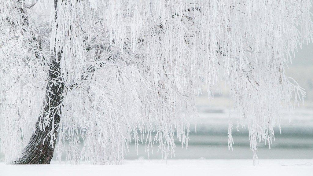 Мороз до -27: синоптик рассказал правду о погоде в феврале в Украине