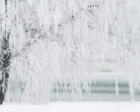 Мороз до -27: синоптик розповів правду про погоду в січні в Україні