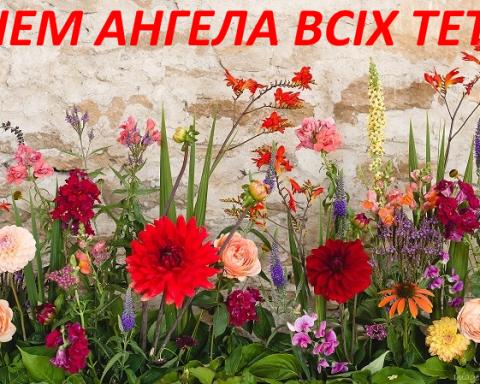 С днем Татьяны: красивые музыкальные открытки и видеопоздравления