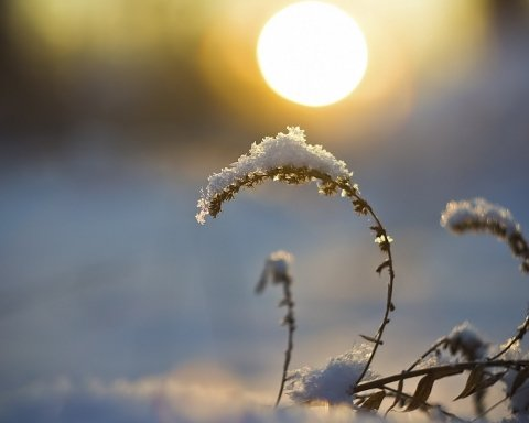 Над Украиной выглянет солнце: синоптики дали свежий прогноз погоды