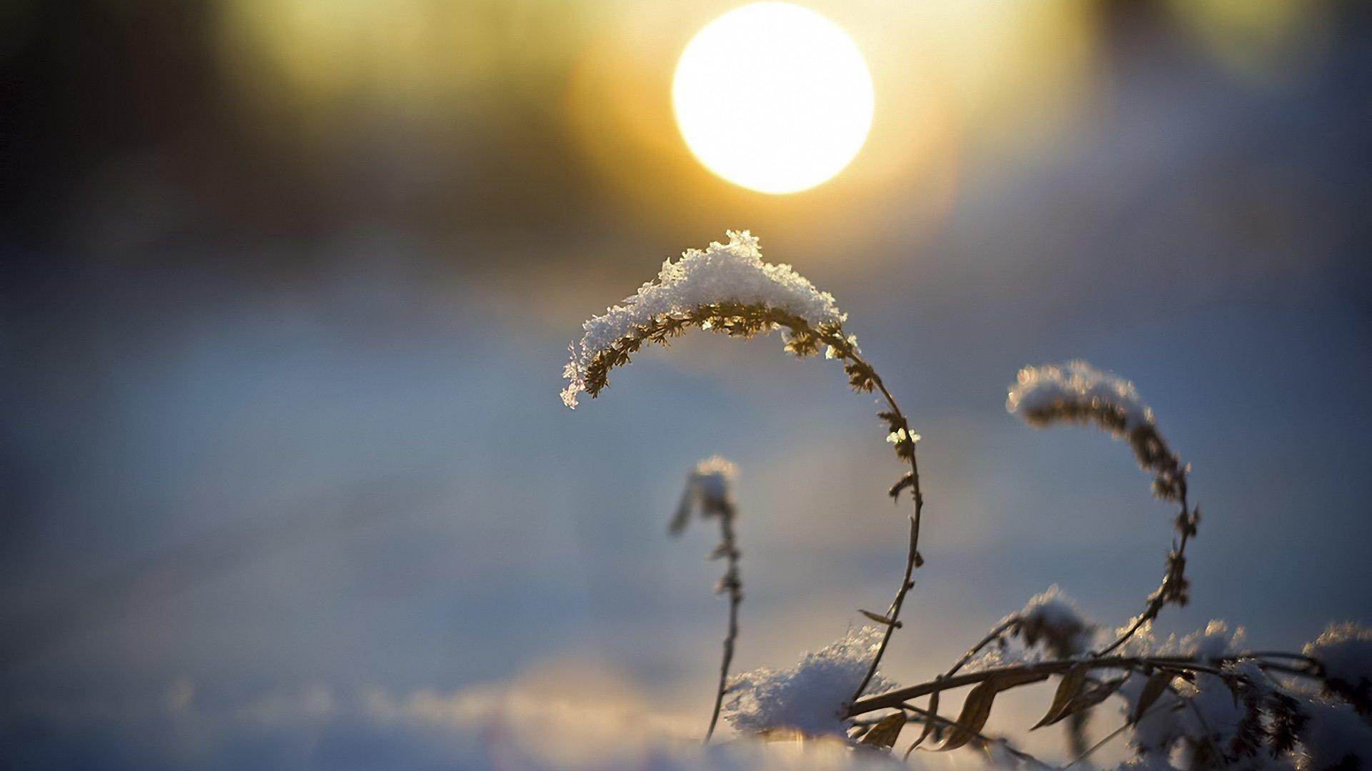 Над Україною вигляне сонце: синоптики дали свіжий прогноз погоди