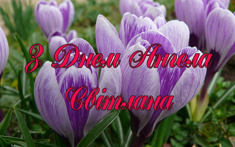 Поздравления с Днем ангела Светланы: красивые пожелания и яркие открытки