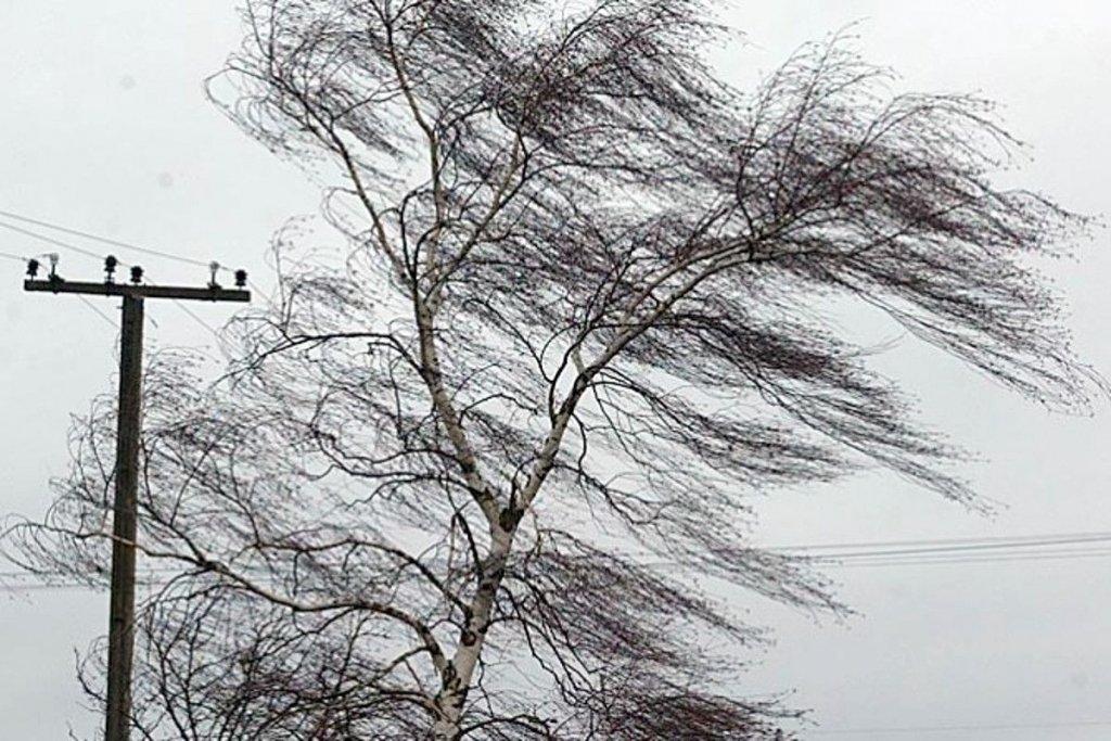 Синоптики попереджають про сильні пориви вітру на Черкащині