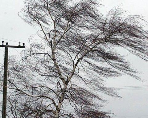 На Киев надвигается мощный ветер: появилось важное предупреждение