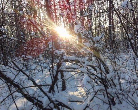 Морози до -15: синоптики засмутили українців прогнозом погоди на вихідні