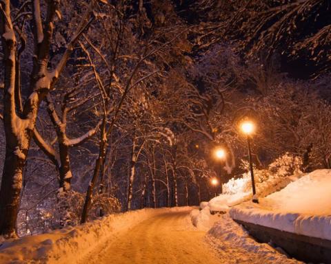 Київ почало замітати снігом: з'явилося відео