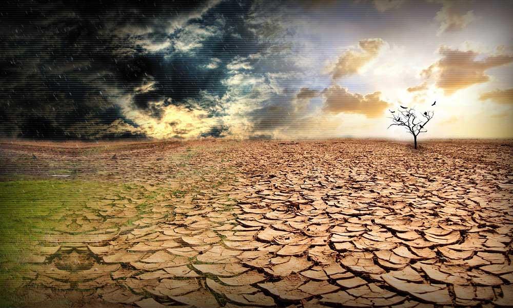 Как глобальное потепление может помочь Украине