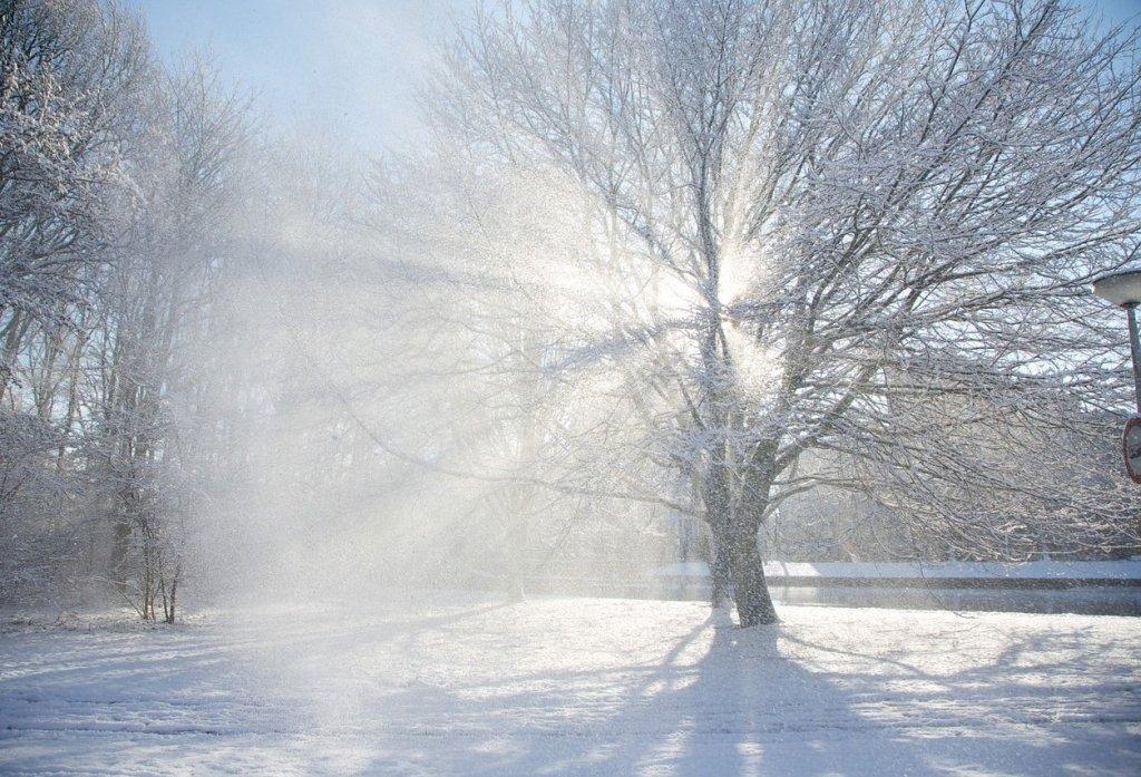 Українців попередили про сильні снігопади та вітер: кому завтра не пощастить з погодою