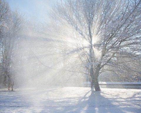 Украинцев предупредили о мощных снегопадах и ветре: кому завтра не повезет с погодой