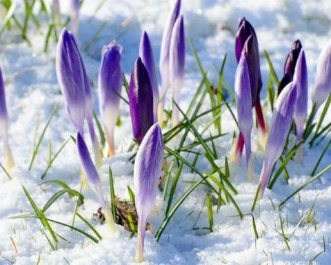Холодно будет не только в марте: синоптик дал прогноз погоды на весну