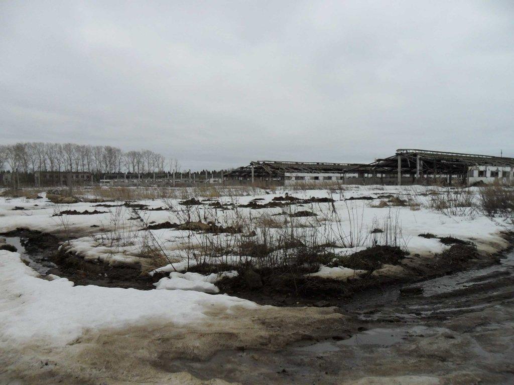 Селяне Полтавщины обвиняют «Астарту-Киев» в нечеловеческом отношении и подделке подписей на договорах аренды