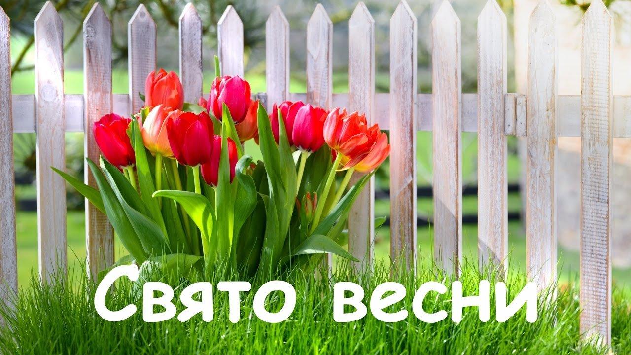 Картинки по запросу поздравления весна пришла
