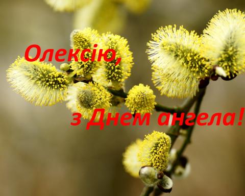 Теплий Олексій: смс, листівки і кращі поздоровлення з Днем ангела Олексія